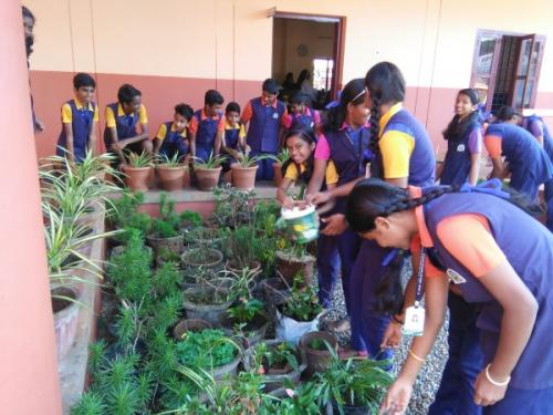 GARDENING - SENIOR STUDENTS